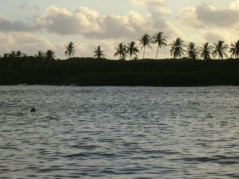 vista do rio itanhém, com as silhuetas de uma faixa de terra e palmeiras ao fundo, e luz do por do sol