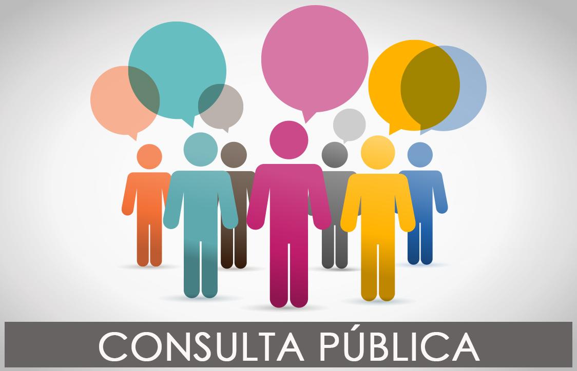 notícias portal consulta pública